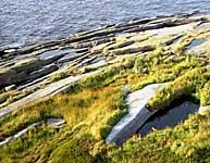 Вид с маяка на остров Топ. 2002 г.