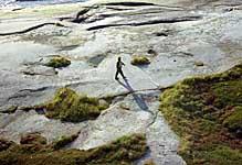 На острове Топ. 2002 г.