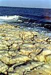 Кварцевая жила на острове Топ