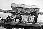 На прибрежном лове в 1952 г. сдано сверх плана 458 центнеров рыбы. Фото из архива Пушлахты