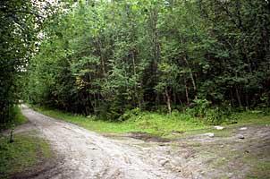 Развилка дорог в Долгой губе, около которой находилась в XIX - нач. XX вв. часовня св. Варвары, покровительницы мореходов