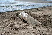Долбленка под слоем песка