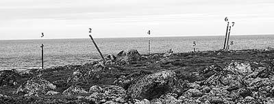 Илл.2. Южная часть Большого Каменного мыса. Вид с юга
