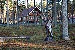 Коттеджная гостиница «Малая Медвежка». Фото 2007 г.