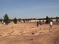 Самая северная пустыня